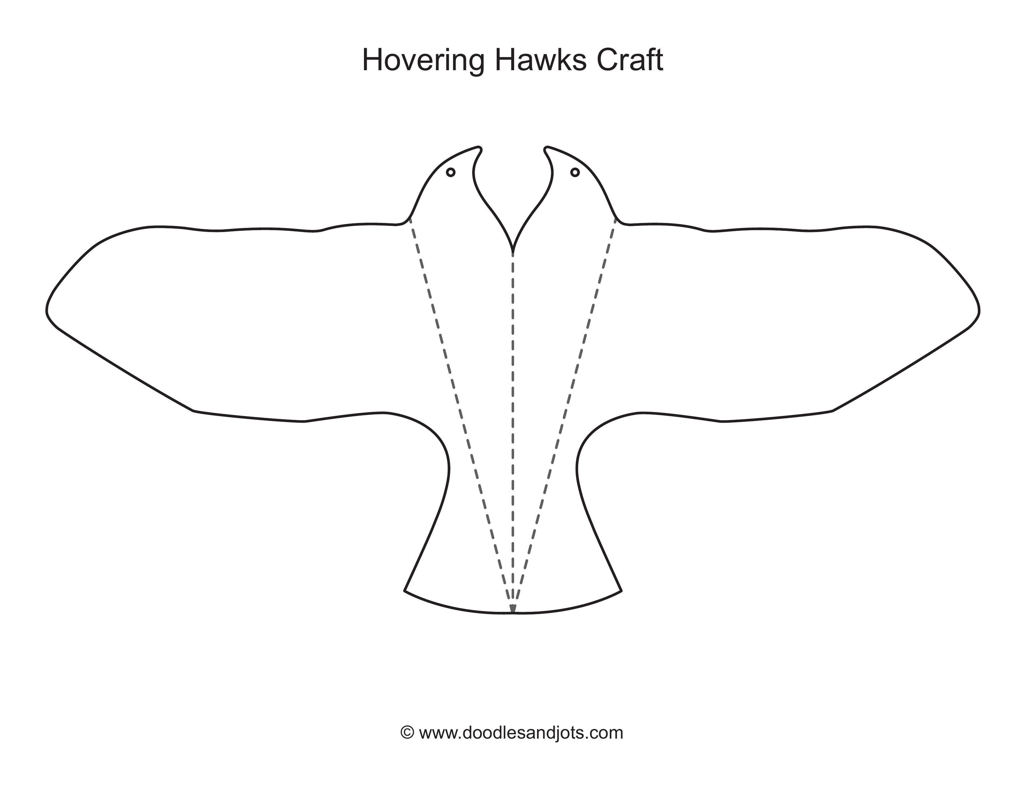hovering-hawk-activity